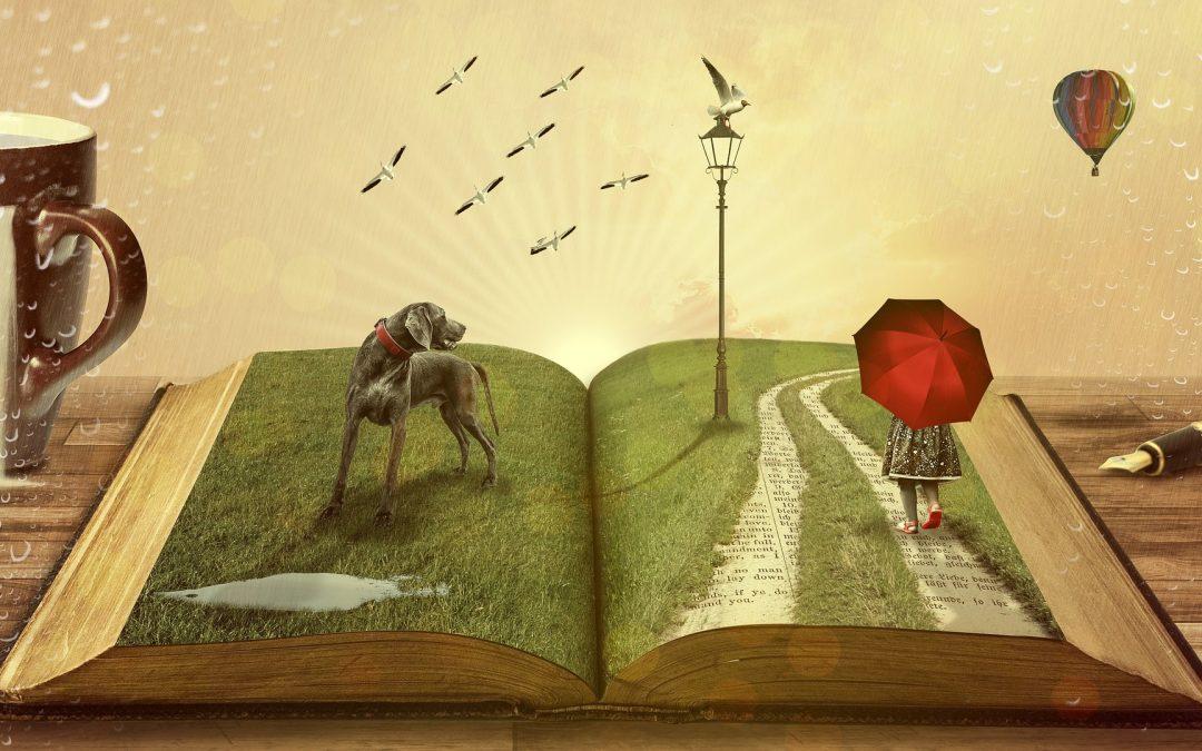 Knjižnica – svet čudes